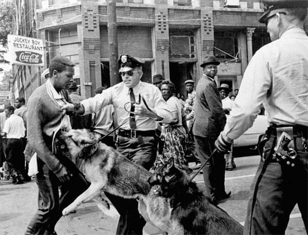 Polics_dog_Birmingham_civil_rights_movement