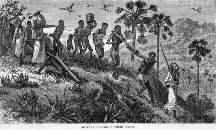 the history of the african and native american slavery As the indian slave trade gave way to the african slave trade by the late 1700's (by then over 300 years old) native american women began to intermarry with imported africans, producing mixed-race offspring whose native identities became obscured through time.