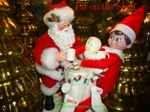Elf-on-the-Shelf4